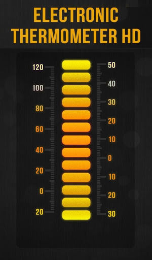 Electronic Thermometer HD